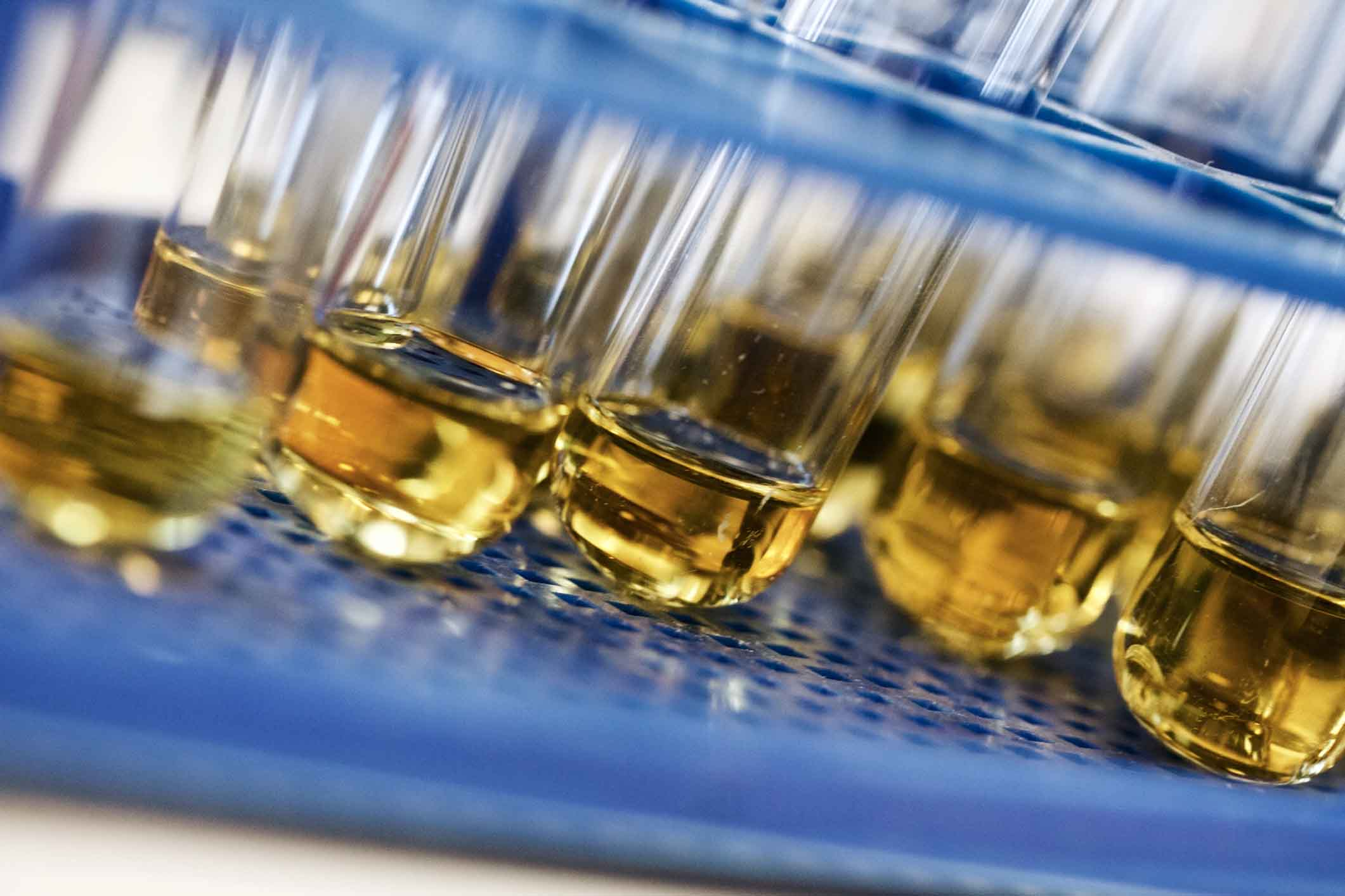 SouthEast Options Consulting - Drug Testing - urinalysis